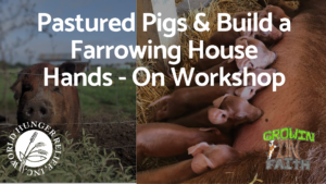 Pastured Pigs & Build a Farrowing House @ World Hunger Relief | Waco | Texas | United States