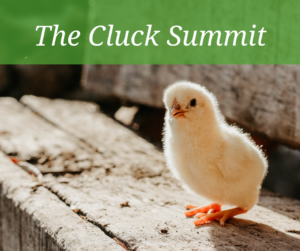 The Cluck Summit @ Mesquite Field Farm