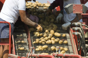 Assistive Technology for Farm Workers & their Employers @ Online Webinar